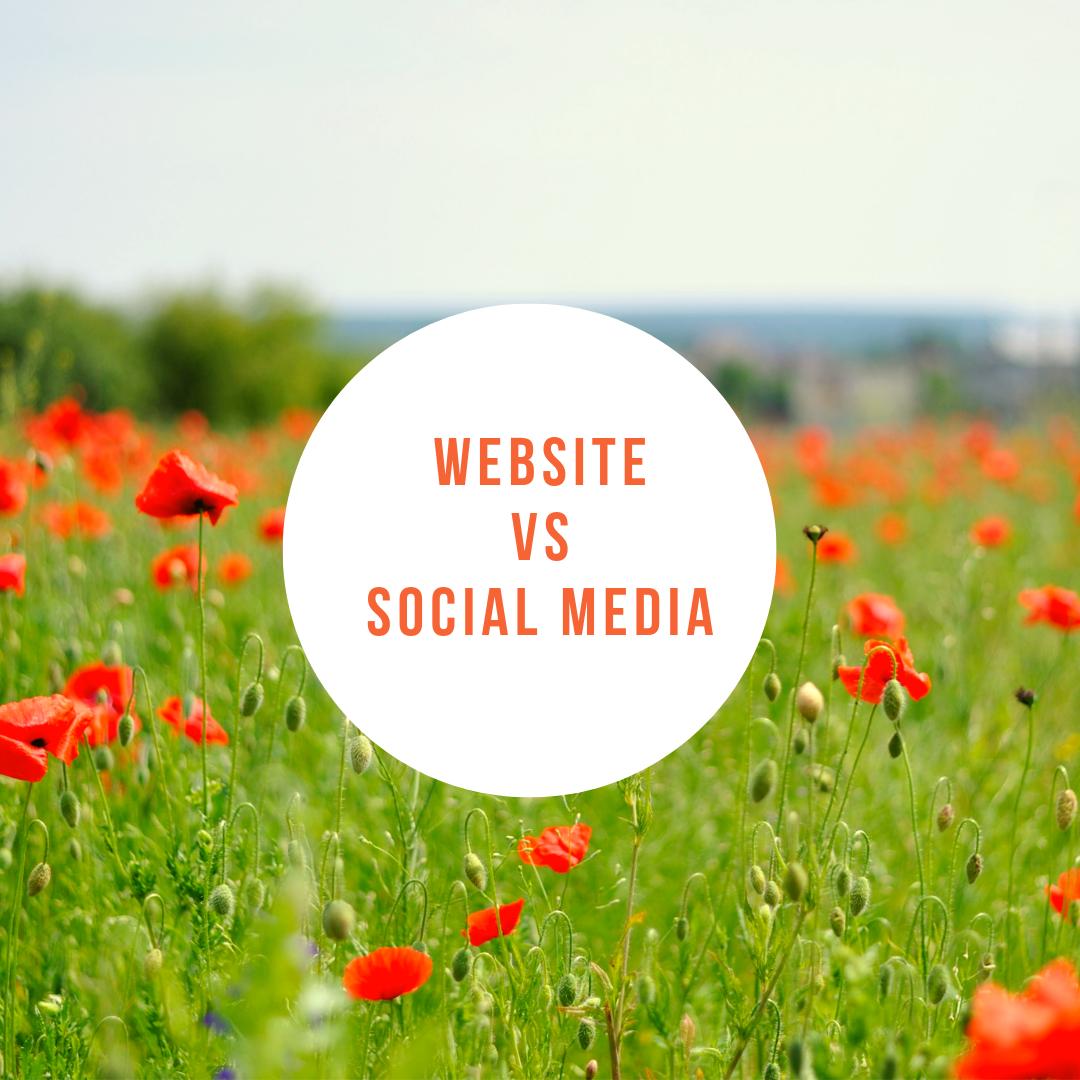 Business Website vs Social Media